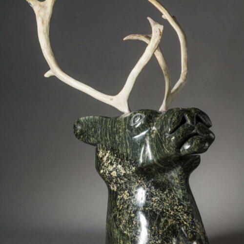 Aqjangajuk Shaa-Caribou Head