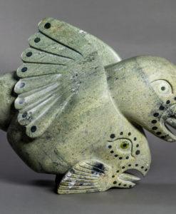 Toonoo Sharky- Bird Spirit