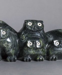 Joanassie Manning-Owl and Chicks