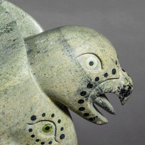 Toonoo Sharky- Esprit Oiseau