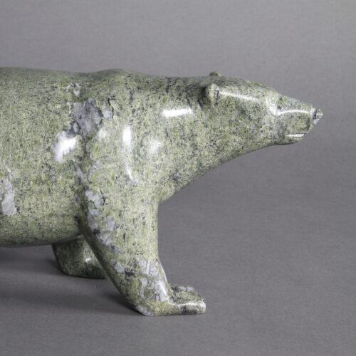 Bear-Tim Pee