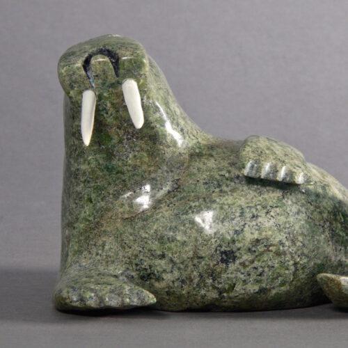 Kellypalik Etidloie-Walrus