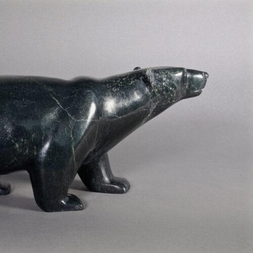 Timothy Pee-Bear