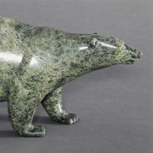 Walking Bear by Tim Pee