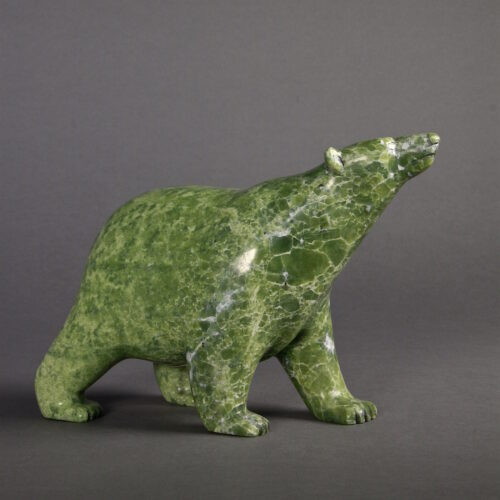 Bear by Tim Pee