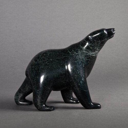 Bear by Timothy Pee