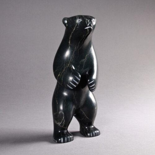 Ours dansant par Taqialuk Nuna