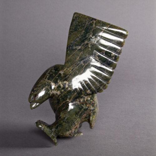 Bird by Kiliktee Kiliktee